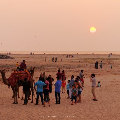Indian local tourists with a camel on the beach